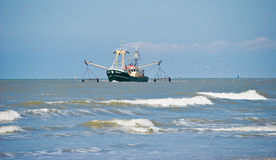 Fishing boat. Followed by seagulls Royalty Free Stock Photo