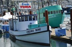 Fishing Boat `Chelsea Rose` at Newport, Oregon. The fishing boat, `Chelsea Rose` is one of many in Newport, Oregon that does business selling fresh fish caught Royalty Free Stock Photos