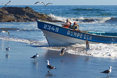Fishing Boat Coming Ashore. On the sandy beach in the fishing village of Curanipe, Chile. Once the boats are beached on the sand, a tractor is used to pull the royalty free stock photography