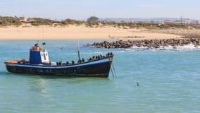Fishing boat and cormorants Royalty Free Stock Image