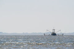 Fishing boat on Dutch wadden sea Royalty Free Stock Photo