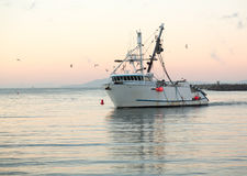 Fishing boat entering Ventura harbor dawn. Fishing boat trawler entering harbor at Ventura at dawn with lights and birds following Stock Photo