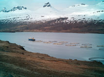 Fishing boat and fish farms ,iceland. Fish farm in eastern fjords iceland Stock Image
