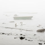 Fishing boat at foggy in the morning Royalty Free Stock Image