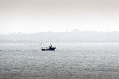 Fishing boat followed by seagulls Royalty Free Stock Image