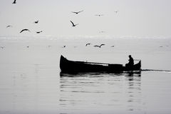 Fishing boat and gulls Stock Photography