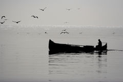 Fishing boat and gulls Stock Image