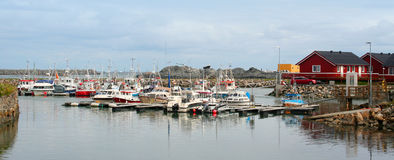 Fishing boat into harbour in Lofoten Island Royalty Free Stock Image