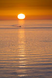 Fishing Boat Heads Home At End Of Day in Florida. This fishing boat heads home from fishing in front of a beautiful sunset at Clearwater Beach, Florida in the Stock Photo