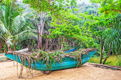 The fishing boat on Jungle Beach. The old fishing boat, covered with palm branches, stands on the sand of Jungle Beach, Unawatuna, Sri Lanka royalty free stock photos