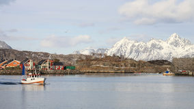 Fishing boat  in Lofoten Royalty Free Stock Images