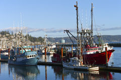 Fishing boat in Newport Oregon. Stock Photography