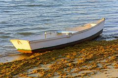 Fishing boat. Old fishing boat in wood Royalty Free Stock Image