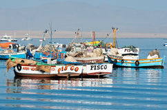 Fishing boat in Paracas national park. Peru Stock Images