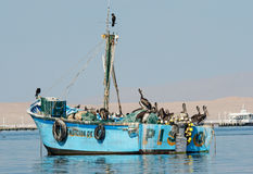 Fishing boat in Paracas national park. Peru Stock Image