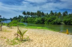 Jungle with beach and boat Royalty Free Stock Photography