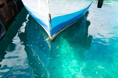 Fishing boat parked at the pier in the beautiful blue sea and fish in the sea stock photos