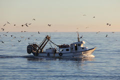 Fishing boat returning to harbor Stock Photos