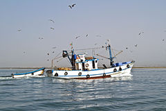Free Fishing Boat Returning To Home Harbor Royalty Free Stock Images - 29445449