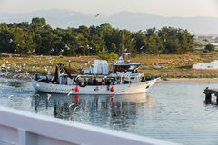 Fishing boat returning to home harbor with lots of seagulls Stock Photography