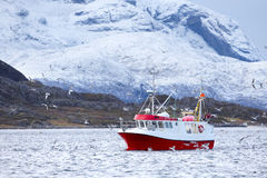 Fishing boat at sea in arctic environment Stock Image