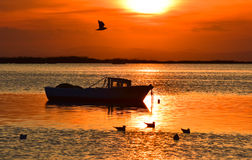 Fishing boat on the sea at sunset.Seagull flying over cloudy sky. Royalty Free Stock Photography