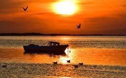 Fishing boat on the sea at sunset. Seagulls flying and swimming on the sea. Royalty Free Stock Image