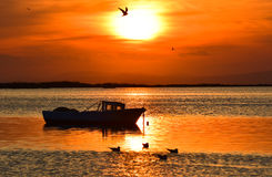 Fishing boat on the sea at sunset. Seagulls flying and swimming on the sea. Stock Images
