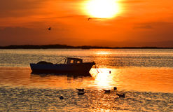 Fishing boat on the sea at sunset. Seagulls flying and swimming on the sea. Stock Photography