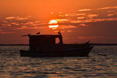 Fishing boat on the sea at sunset. There is a seagull silhouette on the boat. Stock Images