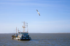 Fishing boat with seagull Royalty Free Stock Photography