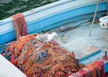 Fishing boat and seagull on the net Royalty Free Stock Image