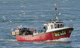 Fishing boat with seagulls, England. Royalty Free Stock Photography