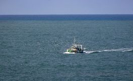 Fishing boat and seagulls in the Nazare waters royalty free stock photos