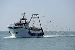 Fishing boat and seagulls. Fishing boat returning to home harbor with lots of seagulls stock photography