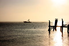 Fishing boat at sunset with birds on the pier. Stock Photos