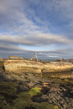 Fishing boat wrecks at Salen on the Isle of Mull. Fishing boat wrecks at Salen on the Isle of Mull in Scotland Stock Photos