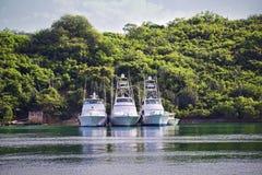 Fishing boats. Three large luxurious fishing boats along a tropical shoreline Stock Photo