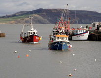 Fishing Boats. Anchored in an English Harbour Royalty Free Stock Photography