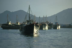 Fishing Boats. Large fishing boats stay within a typhoon shelter Stock Photos