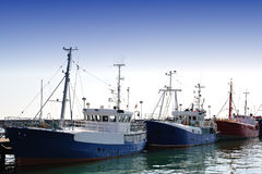 Fishing boats. Fishing fleet in the harbor of Sassnitz (Ruegen, Germany Royalty Free Stock Photography
