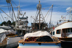 Fishing boats. In harbour of zadar (croatia stock images