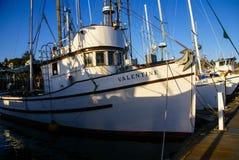 Fishing boats at anchor Stock Images