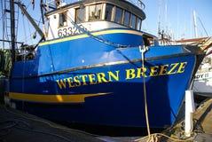 Fishing boats at anchor Royalty Free Stock Images