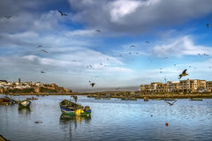 Fishing boats on the bay and the Pacific and flying seagulls in Salies (Morocco) on the background of the old fortress stock photo