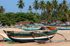 Fishing boats on the beach with palms in the background Stock Photography