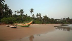 Fishing boats on the beach. Sri Lanka.  stock footage