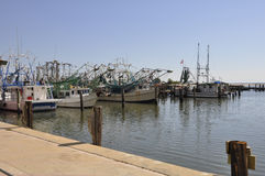 Fishing boats in Biloxi, Mississippi. Several docked fishing boats in the harbor by Biloxi, Mississippi Stock Photography
