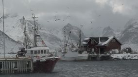 Fishing Boats and Blizzard. Slow Motion. Winter Norway. Cloudy. Two small fishing boats are in the harbor. A lot of seagulls over the harbor. Snowstorm. Slow stock video footage