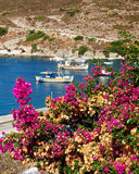 Fishing boats and bougainvillea Stock Images